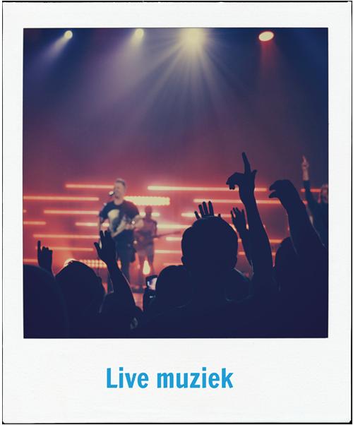 Live muziek als onderdeel van je bedrijfsuitje