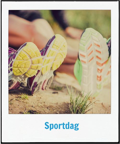 Sportdag op sportcomplex Quintus